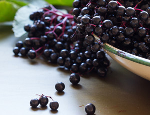 What Are Elderberries (and Can They Keep You from Getting the Flu This Year)?