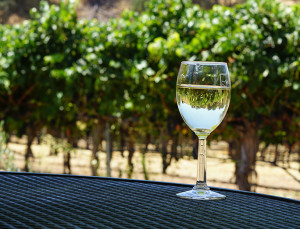 *This* Is the Number One Quality to Look for When Investing in Wine