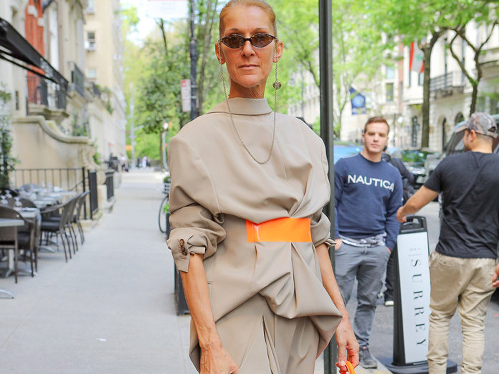 Celine Dion's Wearing Her Blazers Backwards Again