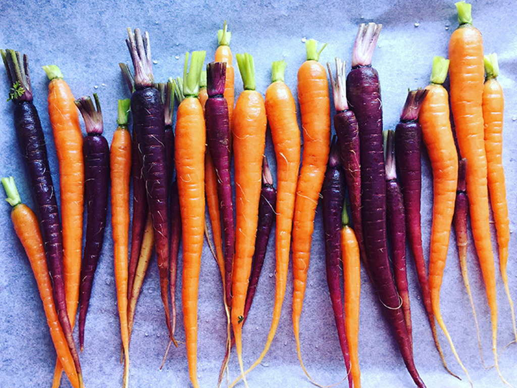 The 15 Most Nutritious Vegetables You Can Put in Your Body