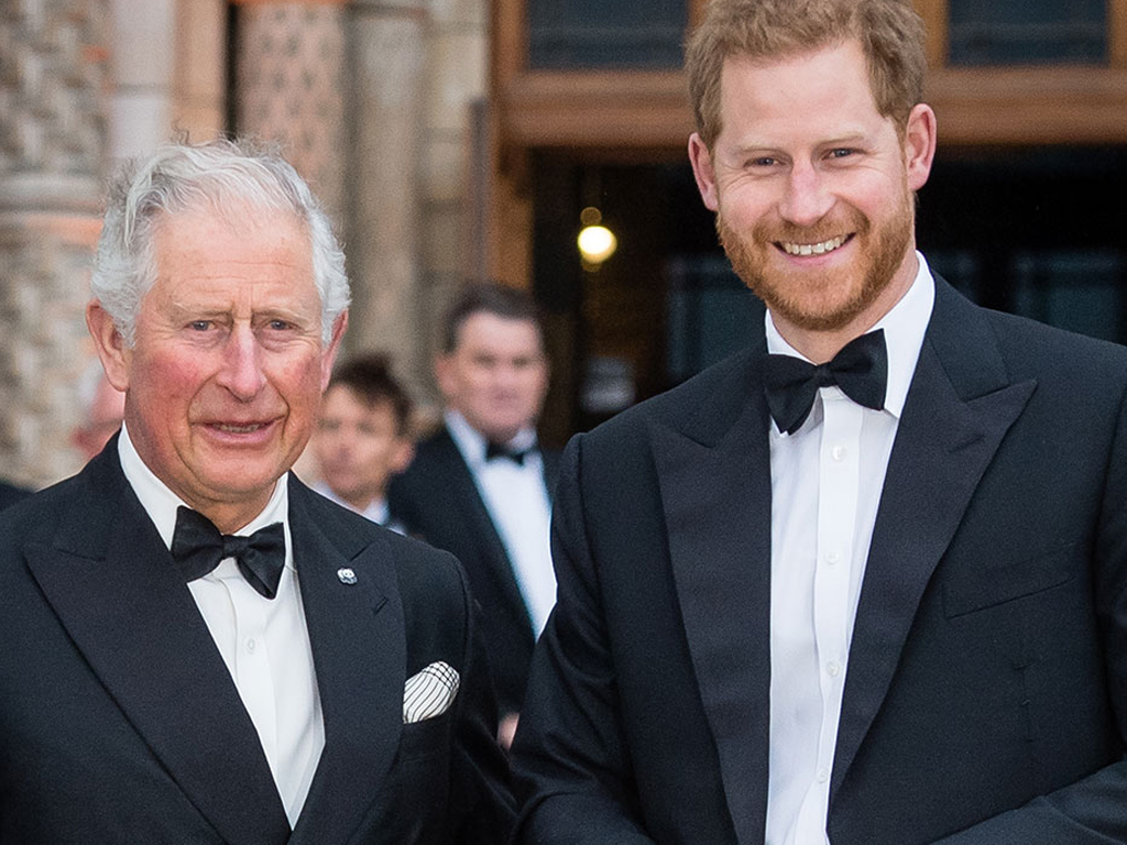Royal Fans Are Freaking Out Over the Resemblance Between Prince Harry and Prince Charles in This Throwback Photo